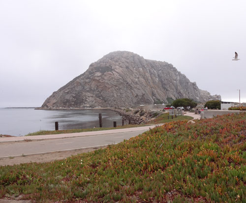 Driving Up Pacific Coast Highway! - A review of a drive up PCH from
